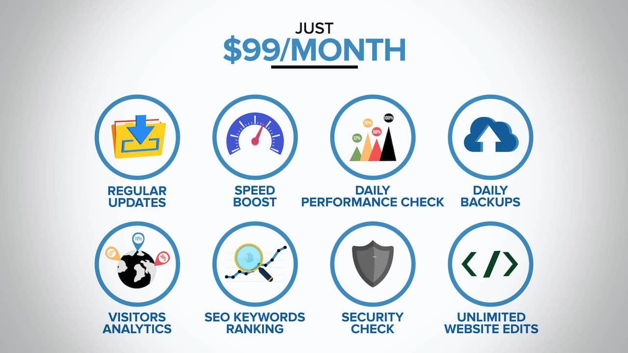Plus Unlimited Website Edits