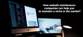 How website maintenance companies can help you to maintain a niche in the market?